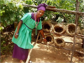 Innovative woman farmer, Mrs Sarah Martha Mbuyisa of KwaMhlanga, Mpumalanga Province, South Africa, developed a system of raised grass baskets for her hens to lay eggs in. This makes it easier to find and collect eggs.
