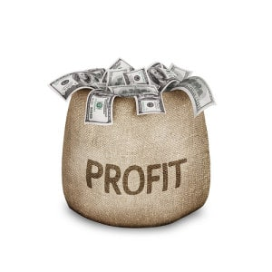 Profitability Just One Factor in Business Continuity