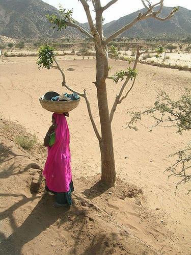 Lady, with basket. Photo by Jonathan Choe