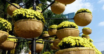 Baskets with yellow flowers