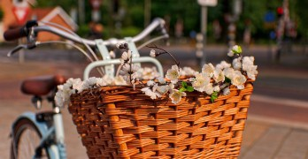 Bicycle basket photo (CC) by tambako on Flickr