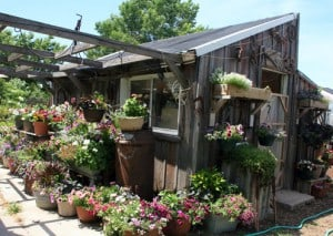 Monas shed
