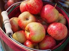Basket apples CC by Renae Rude on Flickr