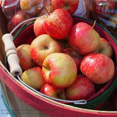 Basket apples CC by Renae Rude on Flickr