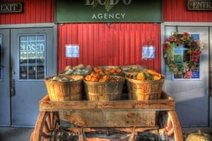 Baskets with pumpkins. Photo cc by Theodore C on Flickr