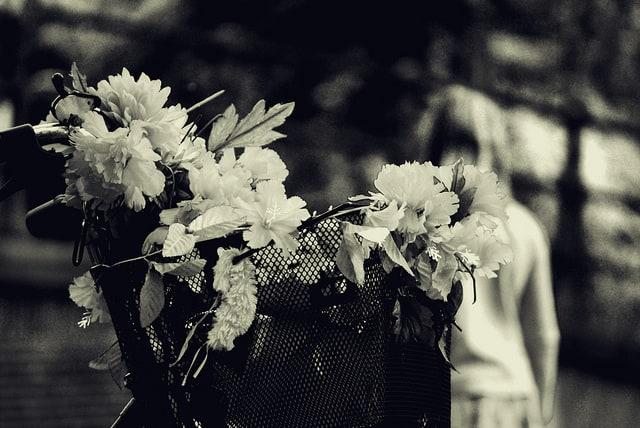 Basket with flowers. Photo CC by José Manuel Ríos Valiente