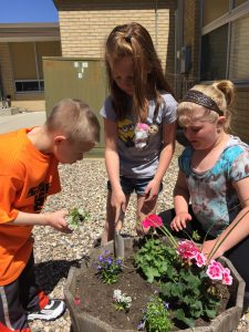 Kindergarten planters. Photo courtesy of Carmen Rath-Wald, North Dakota State University Extension Service