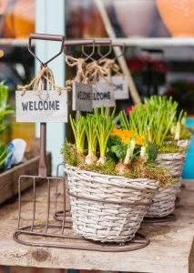 """Baskets with labels that say """"welcome"""""""