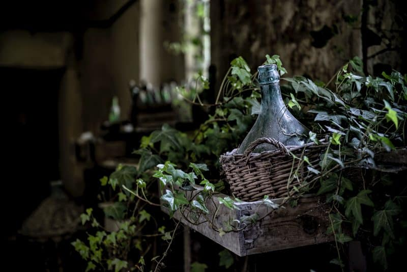 Basket-covered wine jug surrounded by vines