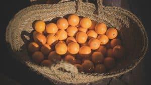 Orange you glad it's time for Brag Basket?