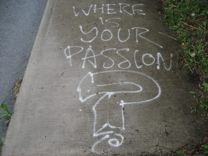 Passion is a Key Factor