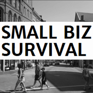 Small Biz Survival icon